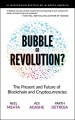 Blockchain Bubble or Revolution